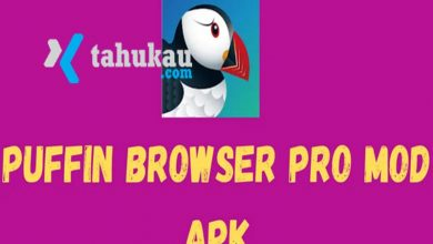 Photo of Download Gratis Puffin Pro Apk Untuk Android