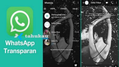 Photo of Download WhatsApp Transparan Apk Versi Terbaru 2021